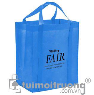Túi vải không dệt NW-S14